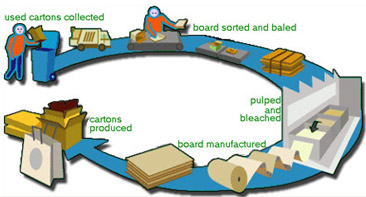 Recycle chain process information